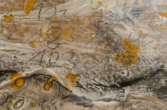 Detail - Mixed Media on Cardboard on Canvas, 218x228cm, 2014